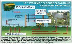 Les maillons principaux de la clôture électrique aidze au choix de l'électrificateur